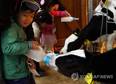 유기농 우유시장 급성장…8년만에 13배로 커져