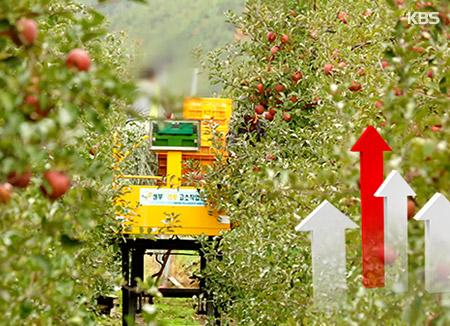 РК наращивает экспорт сельхозпродукции