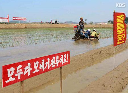 """북한, 연일 모내기 독려…""""식량 자급자족해야 사회주의 강국"""""""