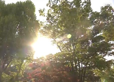 「今年の夏は平年より暑く雨は少なめ」 気象庁
