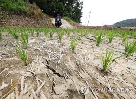 경기도 가뭄 확산···평균 저수율 26.9%