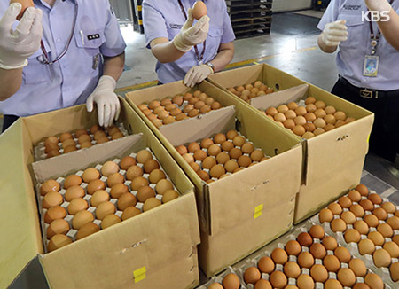 S. Korea Temporarily Removes Tariff on Imported Eggs