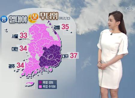 ソウル この夏初の猛暑警報