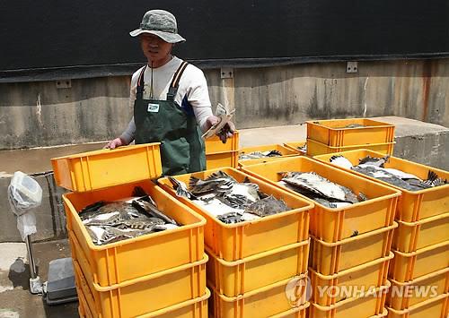 High Sea Temperature Kills Farm-raised Fish