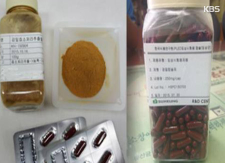 감잎차에서 면역증진 효능 성분 발굴