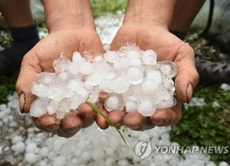 경기·충북·강원지역 강한 비 동반한 '우박 폭탄'