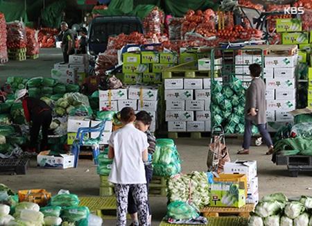 0,3% ارتفاعا في أسعار المنتجين في كوريا خلال أغسطس