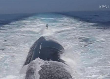 美国攻击型核潜艇7日驶入韩国镇海港