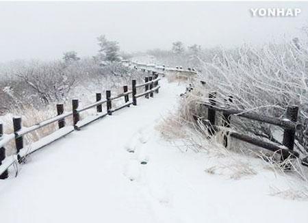 江原道山間部は雪 雪岳山も初積雪