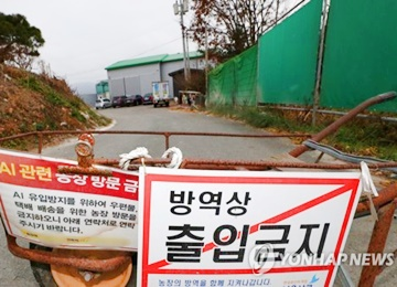 Highly Pathogenic AI Detected in Wild Bird Droppings in Gangwon