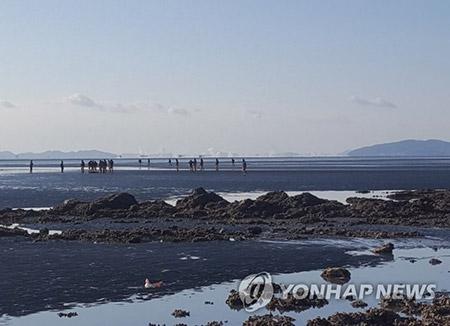 """해경 """"영흥도에서 실종 선장 시신 발견"""""""