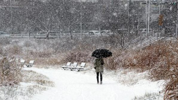 Chungcheong del Sur, Jeolla y Jeju registran fuertes nevadas