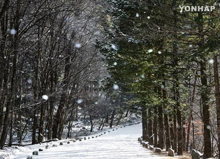 NYT Tetapkan Provinsi Gangwon Tempat Olimpiade PyeongChang sebagai Tempat Wisata Layak Dikunjungi