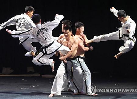 南北テコンドー演武団 五輪期間4回の合同公演