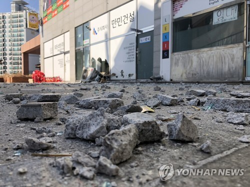 4.6-magnitude natural disaster hits southeast S. Korea