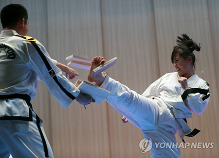 Joint Korean Taekwondo Performance Held at Seoul City Hall