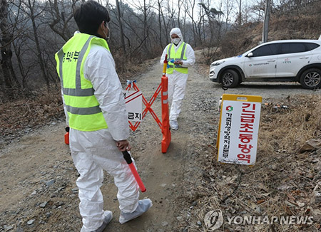 AI Detected at Duck Farm in North Chungcheong Province