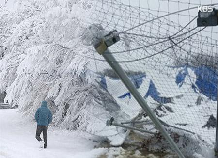 春分大雪与寒风袭击韩半岛东南部地区