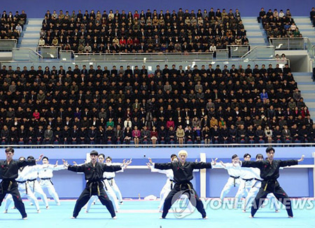 남북태권도 바티칸 합동시범 무산…북한 주도 ITF 불참 통보