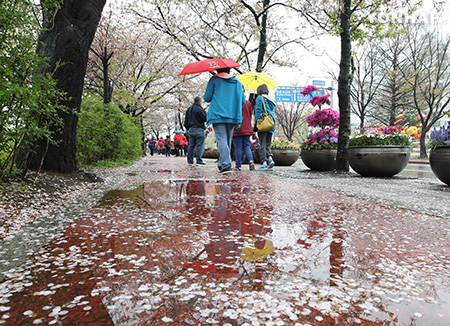 Prevén domingo nublado tras sábado con lluvia