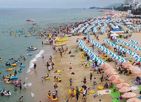 江原道東海岸の海水浴場 6日から海開き