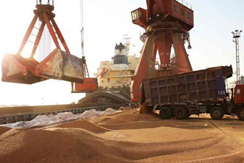 중국, 무역전쟁 실탄 '미국산 대두 수입' 3개월째 중단