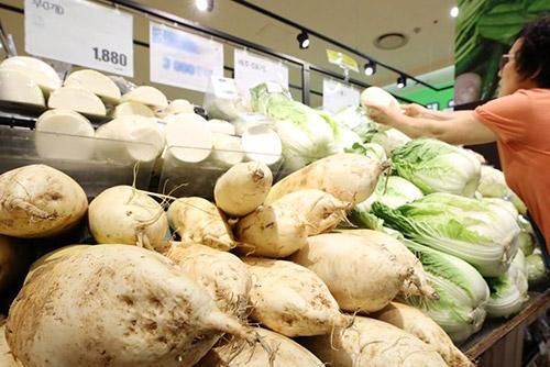 폭염에 배추ㆍ무 등 농산물 가격 비상