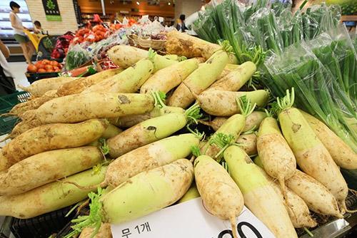 '찜통 더위'에 배추ㆍ무 등 채소 가격 줄줄이 인상