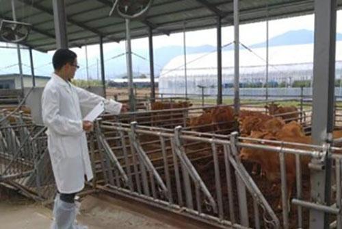 폭염에 가축 543만 마리 폐사ㆍ농작물 2,335ha 피해