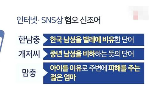 '워마드ㆍ일베' 차별ㆍ비하 사이트 '청소년 접근 차단' 추진