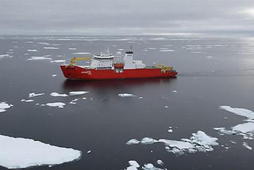 РК ратифицировала международное соглашение о запрете рыбной ловли в Арктике