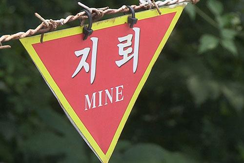"""""""전국 매설지뢰 82만 8천발…대부분 민통선 이북에"""""""