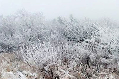 سقوط أول ثلج في هذا الموسم على جبل سوراك