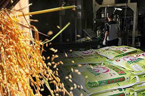 党政将大米目标价格上调至19.6万韩元