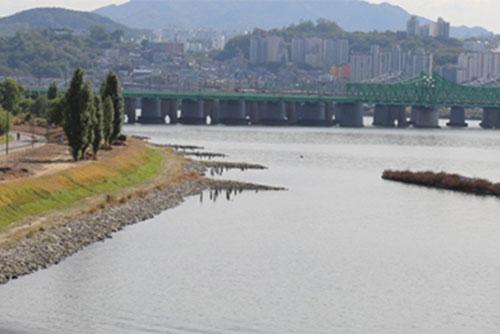 統一部 漢江河口の生態調査へ 南北共同調査の基礎資料集め