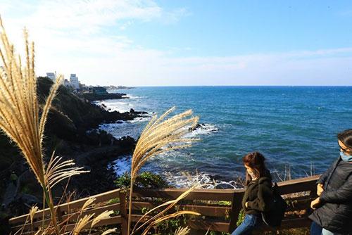 Météo : la péninsule baignée de soleil