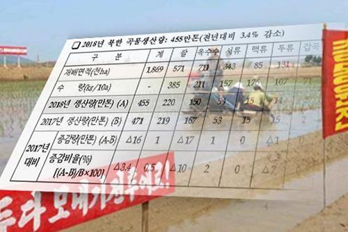 Getreideproduktion in Nordkorea schrumpft auf 4,55 Millionen Tonnen