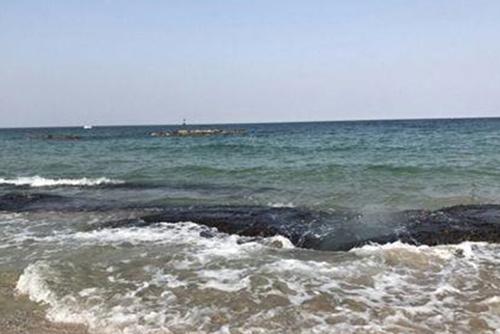 해양생명자원 연근해 넘어 EEZ까지 조사…등급제 도입