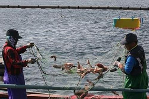 한국 어업, 자원관리로 체질 바꾼다