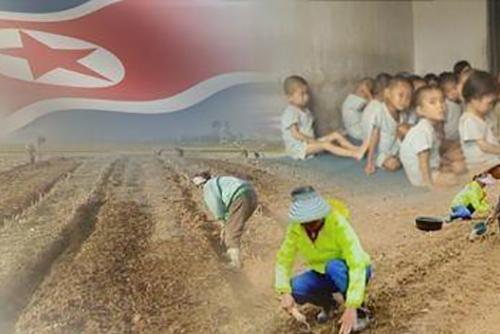 """북한, 북미교착·식량난 속 내부결속 총력…""""법적통제 강화 절박"""""""