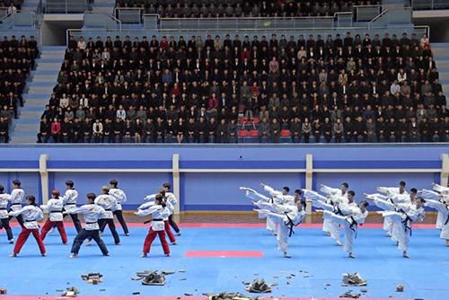 Đồng diễn Taekwondo hai miền Nam-Bắc tại Thụy Sĩ vào tháng 4