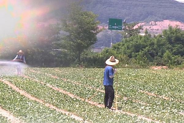 В РК сокращается занятость в сельском хозяйстве