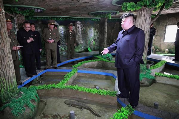 Kim Jong-un aurait ordonné de mettre en réserve nourriture et pétrole, d'après un ancien diplomate nord-coréen