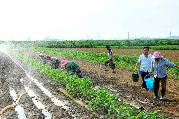 北韩媒体:寻找新农地增加耕地面积