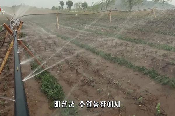 """식량위기 북한, 이번엔 '가뭄과 전쟁'…""""물을 찾아라"""" 독려"""