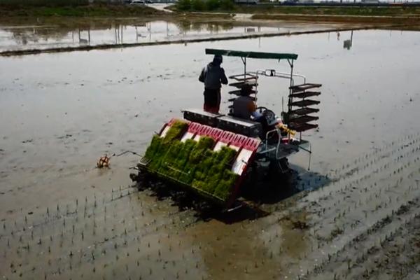 Ранее потепление может нанести ущерб сельскому хозяйству РК