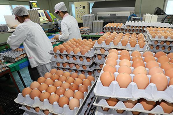 РК увеличит импорт яиц с целью стабилизации цен