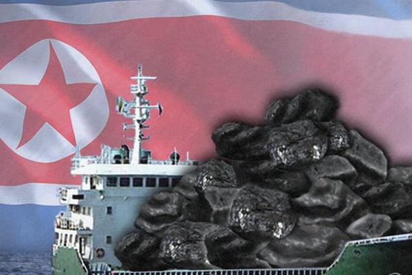 КНДР и Китай больше не скрывают контрабандную торговлю углем