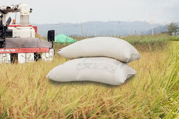 El precio del arroz se dispara al caer la producción