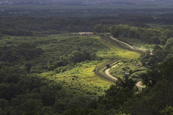 Pemerintah Korsel Upayakan Daftar DMZ Menjadi Warisan Dunia